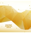 Gold crystal abstract pattern Business Design vector image vector image