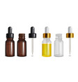 isolated glass bottles with pipette in realistic vector image vector image