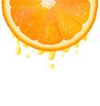 Orange Juice Background vector image