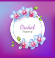 orchid round frame isolated vector image vector image