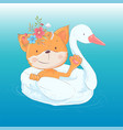 a greeting card or a princess for vector image vector image
