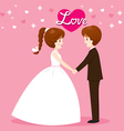 Bride And Groom In Wedding Clothing Clasping Hands vector image vector image