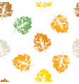 colorful seamless pattern howthorn leaves vector image vector image