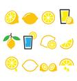 Lemon lime - food icons set vector image vector image