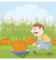 Men driven truck with pumpkin vector image vector image