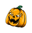 monster yellow pumpkin with two yellow eyes vector image vector image