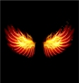 Wing in flame and fire vector image vector image
