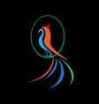 bird abstract logo vector image