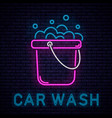 car wash neon vector image vector image