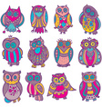 collection of cute colorful owls vector image vector image