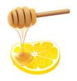 honey lemon vector image vector image