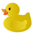 isolated rubber duck vector image