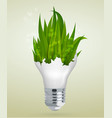 light bulb with grass concept vector image vector image