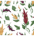 natural seamless pattern with quinoa or amaranth vector image vector image