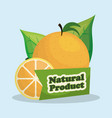 orange natural product market label vector image