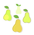 pear fresh fruit - organic food vector image vector image