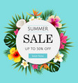 summer sale tropical banner vector image vector image
