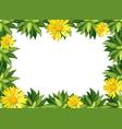 yellow daisy flower border vector image