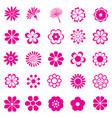 flower set vector image