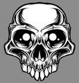 custom skull vector