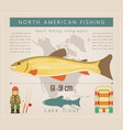 lake trout vector image
