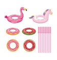 float set wirh donut fruits and animals vector image vector image