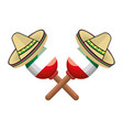 pair mexican maraca instrument with traditional vector image vector image