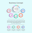 business concept infographic vector image