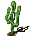 cactus doodle vector image vector image