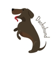 Dachshund isolated Child fun pattern icon vector image