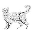 farm animals stylized bushes housecat vector image
