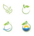 green tree leaf ecology nature element vector image vector image