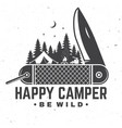 happy camper be wild vector image