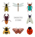insects icons color set vector image vector image