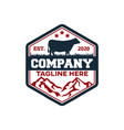 modern badge angus cow and farm logo vector image