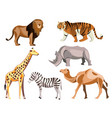 set of africa animals on white background vector image vector image