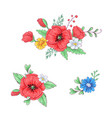 set red poppies and daisies hand drawing vector image
