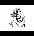 tiger big cat leopard lion pantera yaguar wild vector image vector image