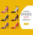 woman shoes sale promotion brochure banner or vector image vector image