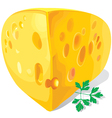 a piece of cheese vector image vector image
