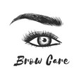 beauty care beautiful hand drawing eyebrows for vector image