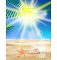 Day with sand shells and palm leaves vector image