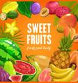 fruits food tropical pineapple banana and papaya vector image vector image