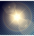 golden sun with light effects vector image vector image