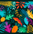 jungle background with tropical palm leaves vector image