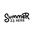 linear hand drawn phrase summer is here lettering vector image