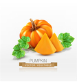 pumpkin and pumpkin slices isolated vector image
