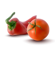 red tomatoe and red pepper vector image