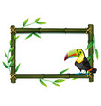 toucan on bamboo border vector image