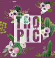 vintage tropical summer cactus design vector image vector image